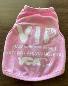 VCA VIP tee shirt